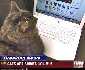 Breaking News - CATS ARE SMART, LOL!!!!!!