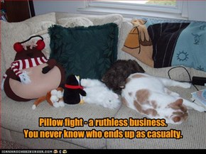 Pillow fight - a ruthless business.  You never know who ends up as casualty.