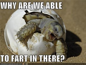 WHY ARE WE ABLE  TO FART IN THERE?