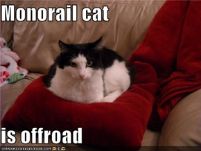 Monorail cat  is offroad