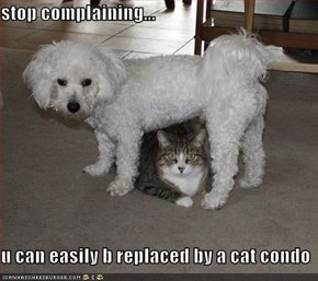 stop complaining...  u can easily b replaced by a cat condo