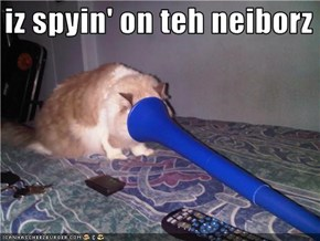i iz spyin' on teh neiborz