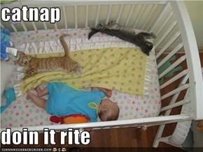 catnap  doin it rite