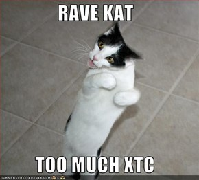 RAVE KAT  TOO MUCH XTC
