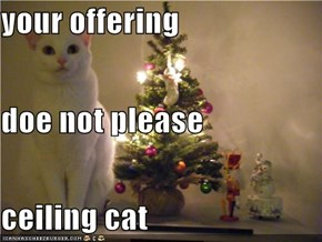 your offering  doe not please ceiling cat
