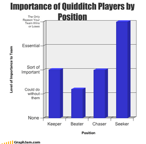 Importance of Quidditch Players by Position