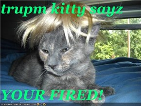 trupm kitty sayz  YOUR FIRED!