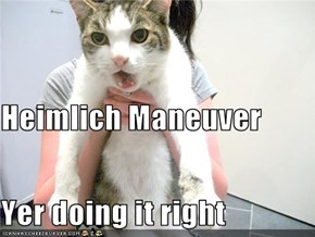 Heimlich Maneuver Yer doing it right