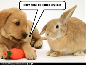 HOLY CRAP HE BROKE HIS EAR!