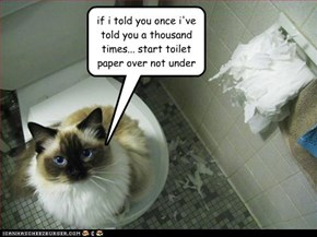 if i told you once i've told you a thousand times... start toilet  paper over not under