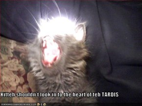 Kitteh shouldn't look in to the heart of teh TARDIS