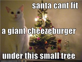 santa cant fit a giant cheezeburger  under this small tree
