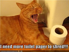 I need more toilet paper to shred!!!