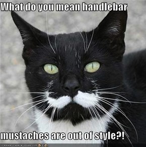 What do you mean handlebar  mustaches are out of style?!