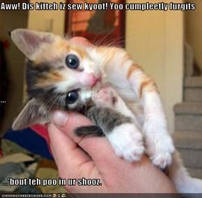 Aww! Dis kitteh iz sew kyoot! Yoo cumpleetly furgits ...  ...'bout teh poo in ur shooz.