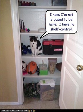 I noes I'm not s'posed to be here.  I have no shelf-control.