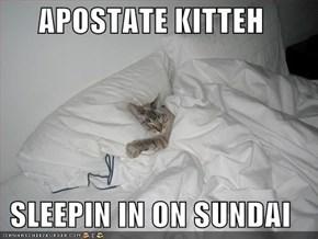 APOSTATE KITTEH  SLEEPIN IN ON SUNDAI