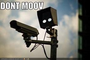 DONT MOOV