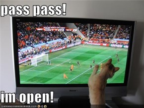 pass pass!  im open!