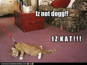 Iz not dogg!!
