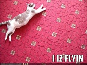 I IZ FLYIN