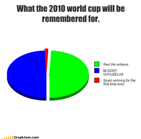 What the 2010 world cup will be remembered for.
