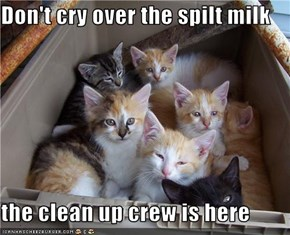 Don't cry over the spilt milk  the clean up crew is here