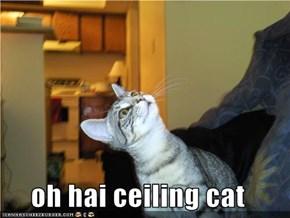 oh hai ceiling cat