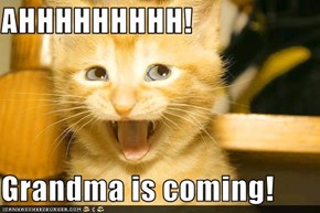 AHHHHHHHHH!  Grandma is coming!