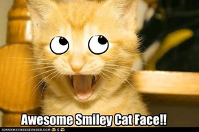 Awesome Smiley Cat Face!!
