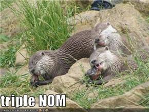 triple NOM