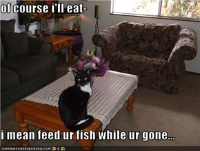 of course i'll eat-  i mean feed ur fish while ur gone...