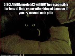 DISCLAIMER: mozlolz12 will NOT be responsible for loss of limb or any other king of damage if you try to steal mah pillo