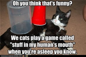 "Oh you think that's funny?     We cats play a game called ""stuff in my human's mouth"" when you're asleep you know."