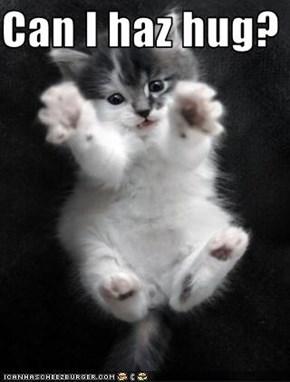 Can I haz hug?