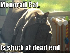 Monorail Cat,  Is stuck at dead end