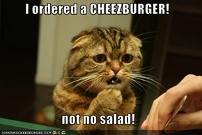 I ordered a CHEEZBURGER!  not no salad!