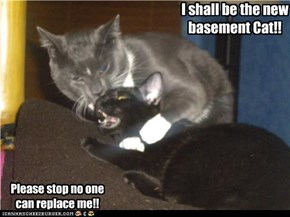 Hostile Basement takeover.