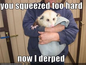 you squeezed too hard  now I derped