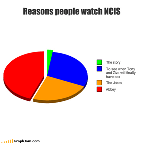 Reasons people watch NCIS