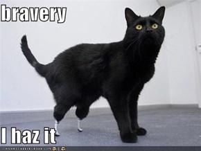 bravery  I haz it