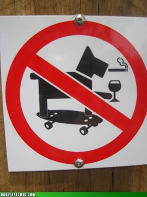 Drunk Skateboarding Dogs Prohibited