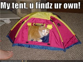 My tent, u findz ur own!