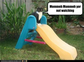 Mommeh Mommeh yor not watching