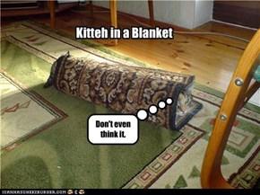 Kitteh in a Blanket