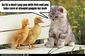So itz a deal i pay yoo with fish and yoo take care of stoopid goggie for meh