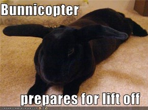 Bunnicopter  prepares for lift off
