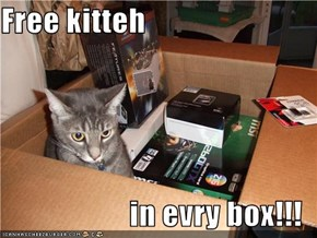 Free kitteh  in evry box!!!