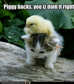 Piggy backs, yoo iz doin it right