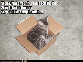 Nap in a box!